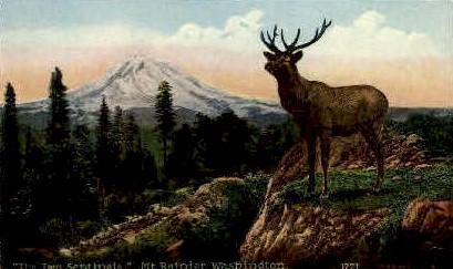 The Two Sentinels - Mt Rainier, Washington WA Postcard