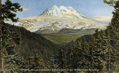 Mountains - Rainier National Park, Washington WA Postcard