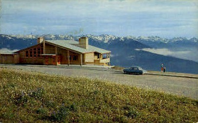 The Lodge at Hurricane Ridge - Olympic National Park, Washington WA Postcard