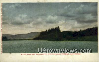 Tanglewood, State College - Pullman, Washington WA Postcard