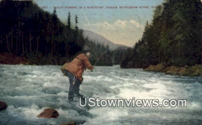 Trout Fishing - Skykomish River, Washington WA Postcard