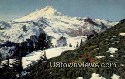 Mt. Baker National Forest - Mount Baker, Washington WA Postcard