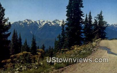 Hurricane Ridge - Bailey Range, Washington WA Postcard