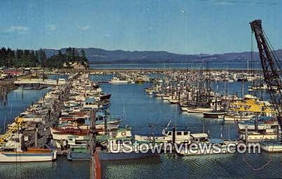 Port Basin - Ilwaco, Washington WA Postcard