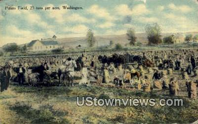 Potato Field 25 Ton per Acre - Misc, Washington WA Postcard