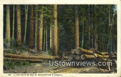 Log Train - Washington Forest Postcards, Washington WA Postcard