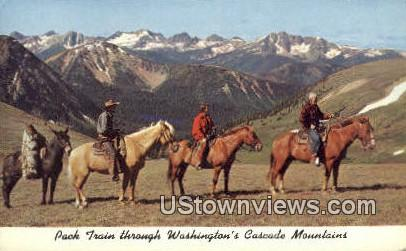 Pack Train - Cascade Mountains, Washington WA Postcard