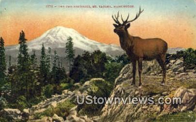 Two Sentinels - Mt Tacoma, Washington WA Postcard