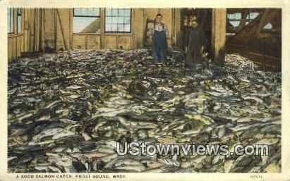 Good Salmon Catch - Puget Sound, Washington WA Postcard