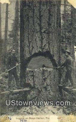 Logging - Grays Harbor, Washington WA Postcard