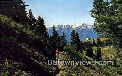 Hurrican Ridge Lodge - Olympic National Park, Washington WA Postcard