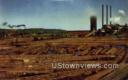 Lumbering - Cowlitz Co, Washington WA Postcard