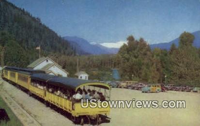 Skagit River - Bellingham, Washington WA Postcard