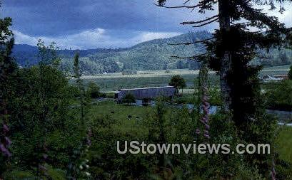 Grays River Covered Bridge - Wahkiakum County, Washington WA Postcard
