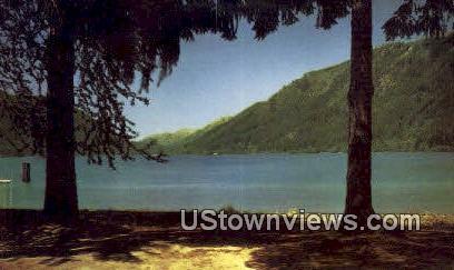 Lake Crescent - Olympic Peninsula, Washington WA Postcard