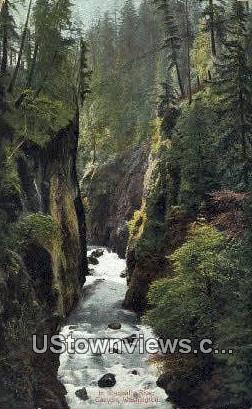 Nisqually River Canyon, Washington,     ;     Nisqually River Canyon, Wash Postcard