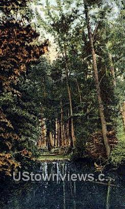 Chelan Co, Cascade Range - Northwestern Washington Postcards, Washington WA Postcard