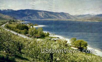 Apple Blossom - Lake Chelan, Washington WA Postcard