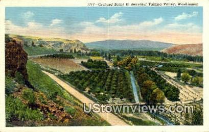 Orchard - Yakima Valley, Washington WA Postcard