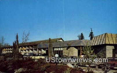 Thunderbird Motel & Restaurant - Bellevue, Washington WA Postcard