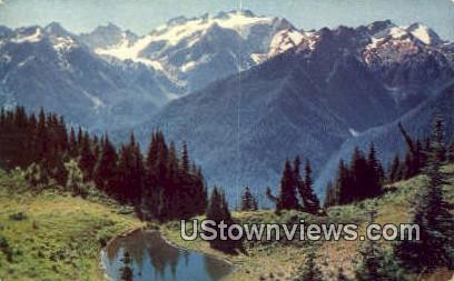 Mt Olympus, Wash,     ;     Mt Olympus, WA - Washington WA Postcard