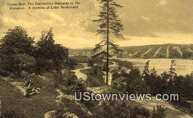 University Grounds - Union Bay, Washington WA Postcard
