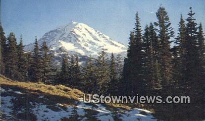 Ipsut Pass - Mt Rainier, Washington WA Postcard