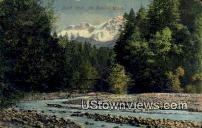 North Fork - Mt Rainier, Washington WA Postcard