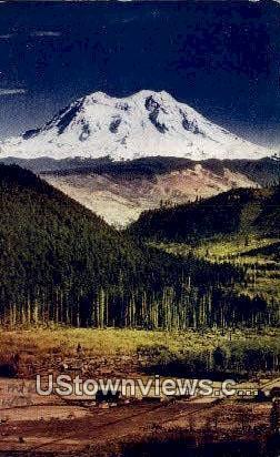 Mt. Rainier National Park - Mt Rainier, Washington WA Postcard