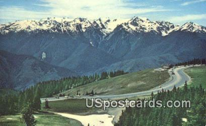 Mt Olympus & Bailey Range - Hurricane Ridge, Washington WA Postcard