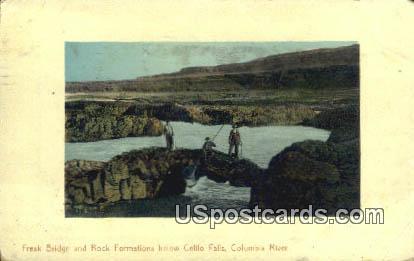 Freak Bridge - Columbia River, Washington WA Postcard