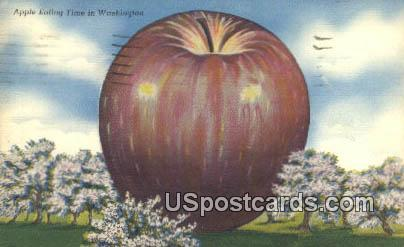 Apple Eating - Misc, Washington WA Postcard
