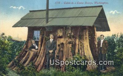 Cabin - Cedar Stump, Washington WA Postcard