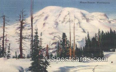 National Park - Mt Rainier, Washington WA Postcard