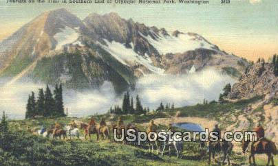 Olympic National Park, Washington Postcard     ;      Olympic National Park, WA