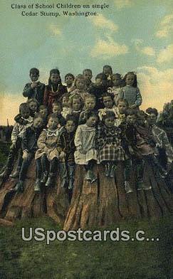 Class of School Children - Cedar Stump, Washington WA Postcard