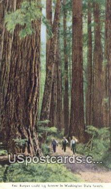 Pual Bunyan - Washington State Forest Postcards, Washington WA Postcard