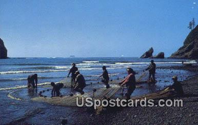 Smelt Fishing - Pacific Ocean Seacoast, Washington WA Postcard