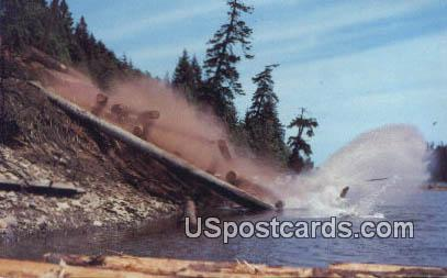 Dumping Logs - Misc, Washington WA Postcard