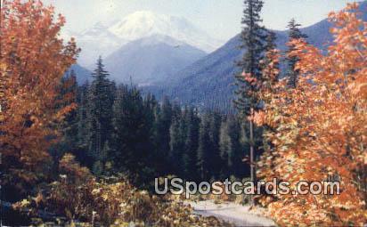 Naches Pass Highway - Mt Rainier, Washington WA Postcard