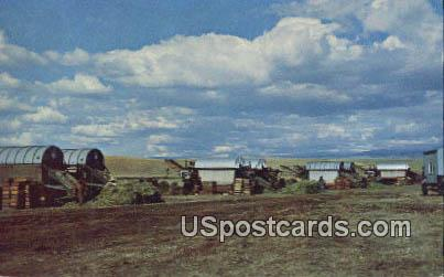 Green Pea Harvest - Misc, Washington WA Postcard