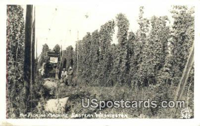 Real Photo - Hop Picking Machine - Eastern Washington Postcards, Washington WA Postcard