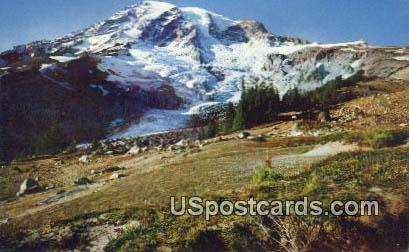Glacier Vista - Mt. Rainier National Park, Washington WA Postcard