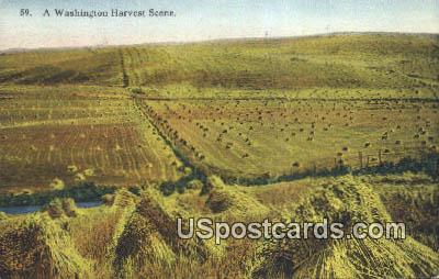 Harvest Scene - Misc, Washington WA Postcard