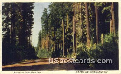 Federation Forest State Park, WA Postcard      ;      Federation Forest State Park, Washington Post
