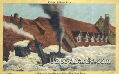 Highway to Paradise Inn - Rainier National Park, Washington WA Postcard