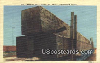 Washington Toothpicks - Washington Forest Postcards Postcard