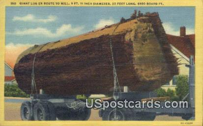 Giant Log - Misc, Washington WA Postcard