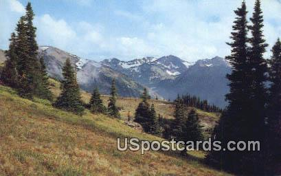 Olympic Mountains - Olympic National Park, Washington WA Postcard