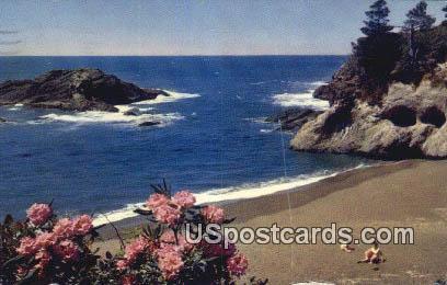 Pacific Ocean Seacoast, WA Postcard      ;      Pacific Ocean Seacoast, Washington